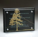 Black Glass Plaque with Glass Layer Black