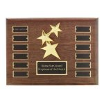 Perpetual Star Plaque Sales Awards