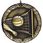 XR Medals -Volleyball  Volleyball