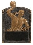 Legends of Fame Award -Water Polo Male  Water Polo